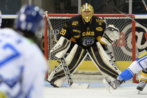 Miika Wiikman in nets for Cardiff visit