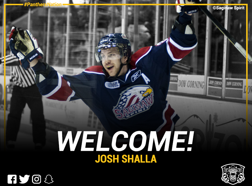 GMB Panthers sign Josh Shalla Top Image