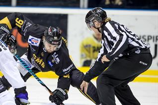EIHL board agree officiating and Challenge Cup changes