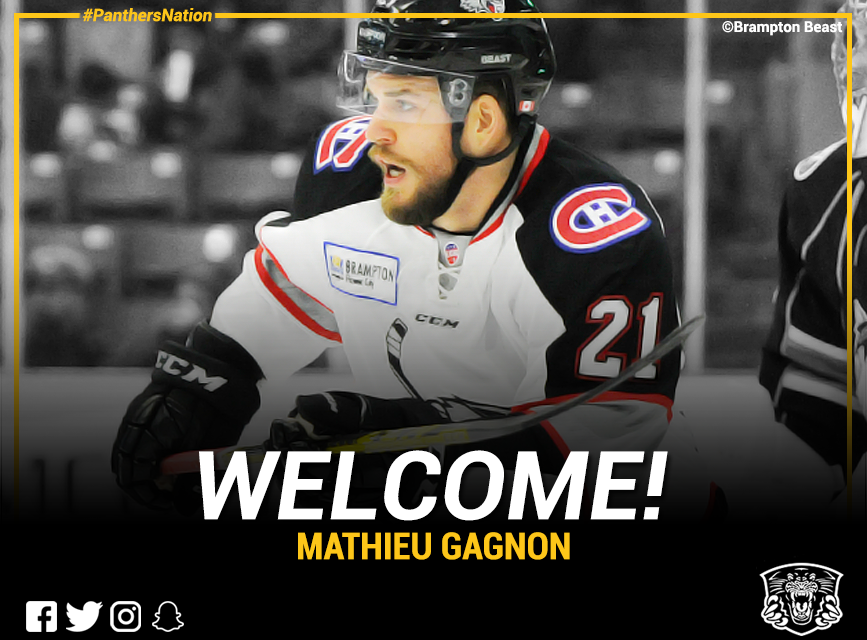 Panthers add highly rated defenceman Mathieu Gagnon Top Image