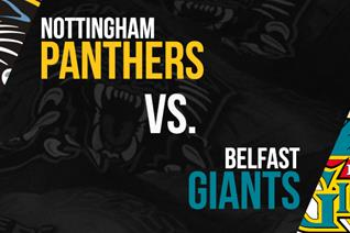 Panthers to face Belfast in semi final