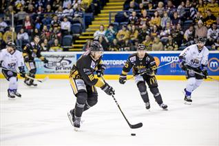 Panthers Seal 4 Point Weekend