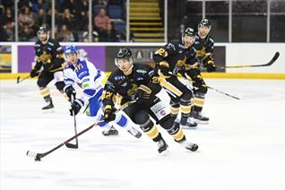 Panthers vs Blaze: New Year's Eve 2018